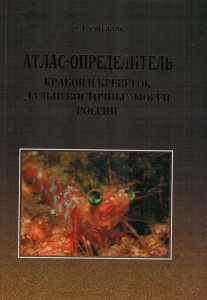 книга4 001