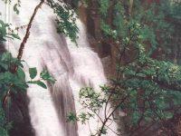 Поэзия летящей воды: водопады