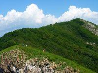 Удивительный остров  Лисий