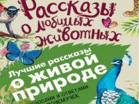 Новые книжки для детей и их родителей