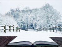 Страна Зимнего Чтения